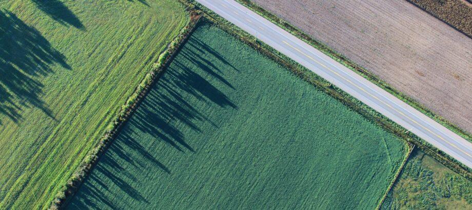 Mniej niejasności w obrocie nieruchomościami rolnymi